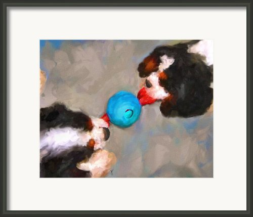 Tug Of War Framed Print By Jai Johnson