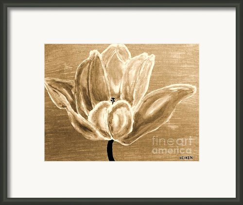 Tulip In Brown Tones Framed Print By Marsha Heiken