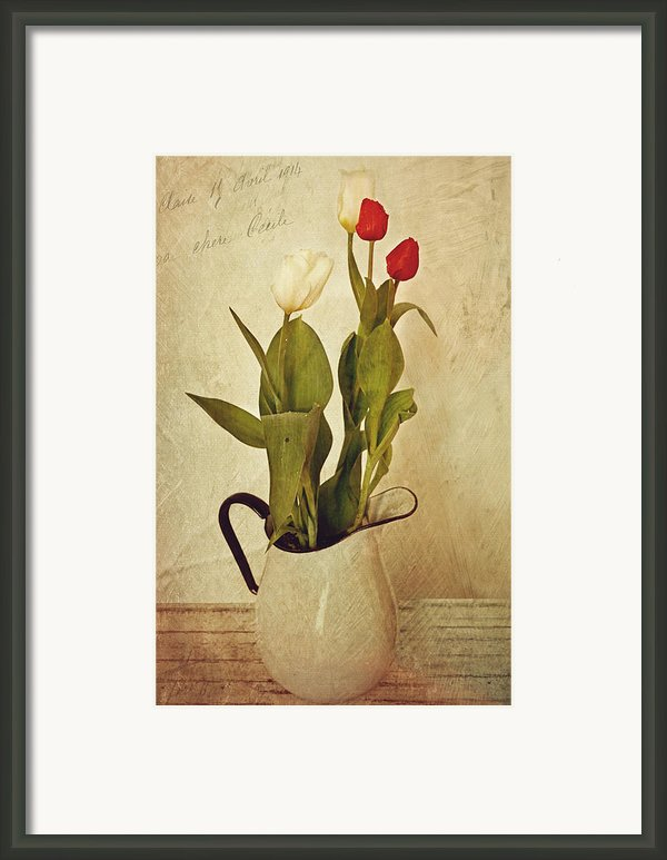 Tulips Framed Print By Kathy Jennings