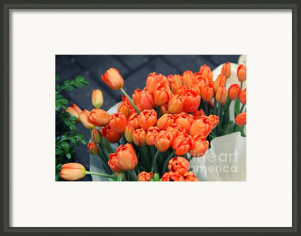 Tulips Framed Print By Leslie Leda