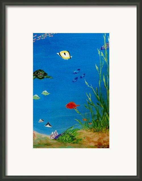 Turtle And Friends Framed Print By Jamie Frier