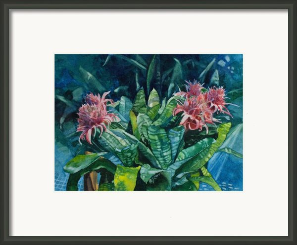 Two Against Three Framed Print By Elizabeth Carr