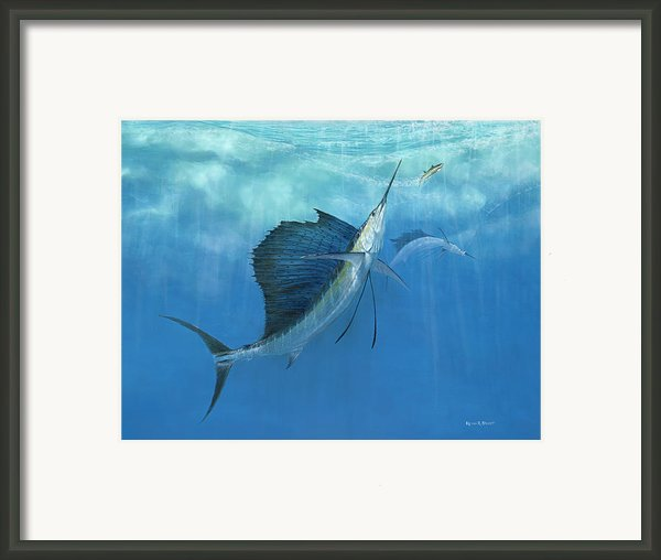 Two Of A Kind Sailfish Framed Print By Kevin Brant