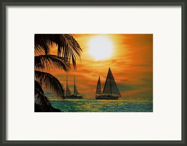 Two Ships Passing In The Night Framed Print By Bill Cannon