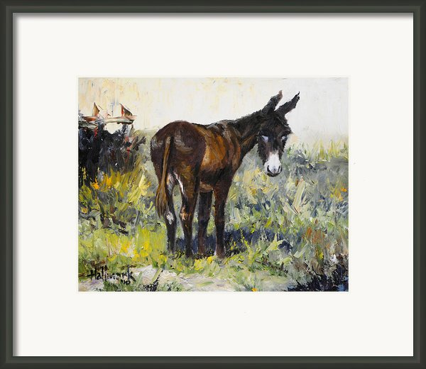 Ugly At Both Ends Framed Print By Bob Hallmark
