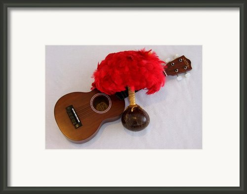 Ukulele And Uliuli Framed Print By Mary Deal