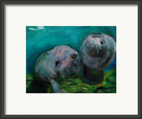 Underwateer Greeting Framed Print By Stevn Dutton