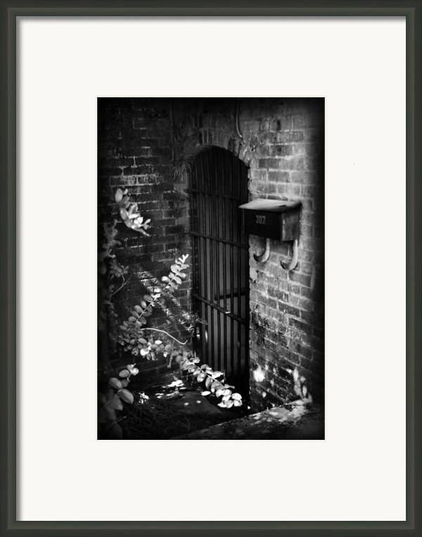 Untitled I Framed Print By Kelly Hazel