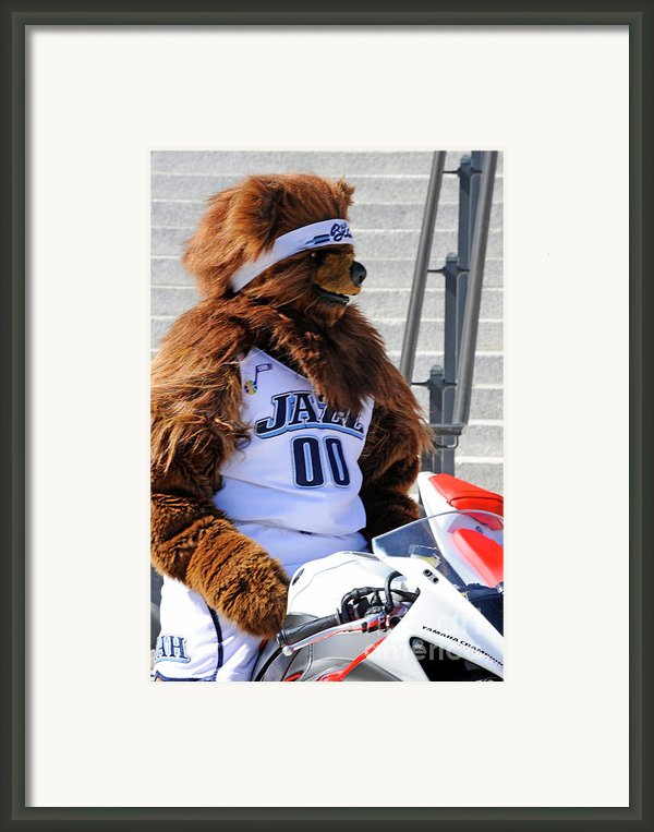 Utah Jazz Bear Framed Print By Dennis Hammer