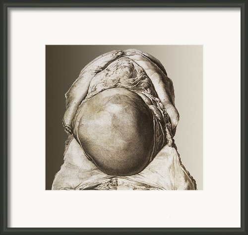 Uterus Of A Pregnant Woman Framed Print By Mehau Kulyk