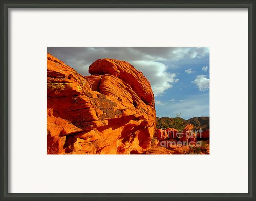Valley Of Fire - Born To Be Wild Framed Print By Christine Till