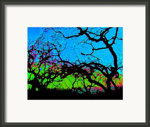 Variations 1 Framed Print By Tim Tanis