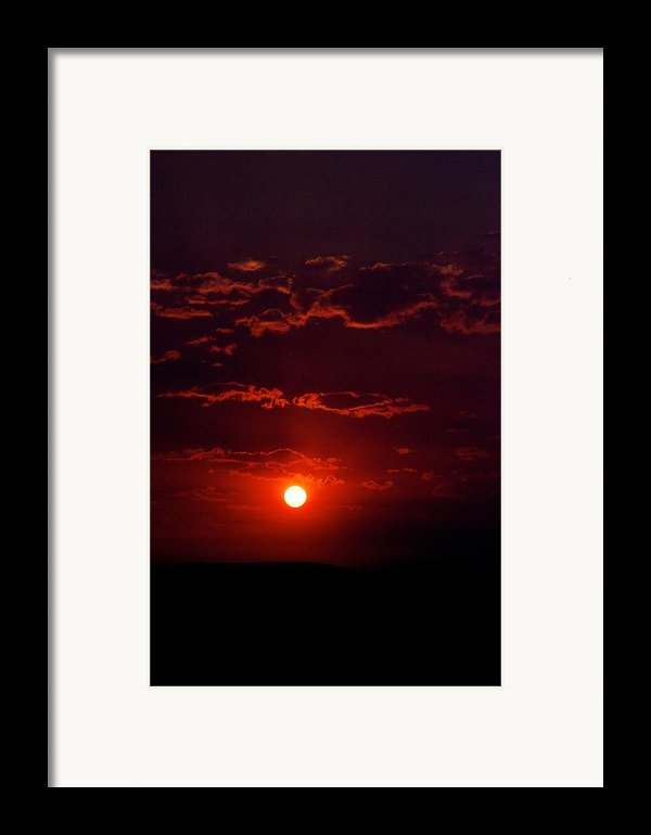 Velvet Sun Framed Print By Kevin Bone