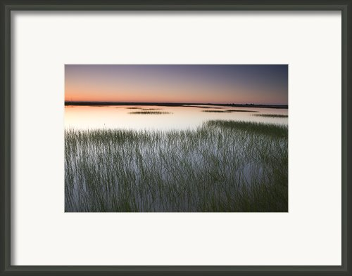 Vernal Pool At Sunrise Jepson Prairie Framed Print By Sebastian Kennerknecht