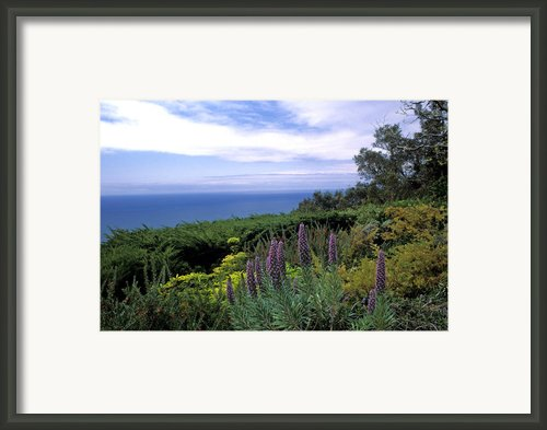 View From Ventana Big Sur Framed Print By Kathy Yates