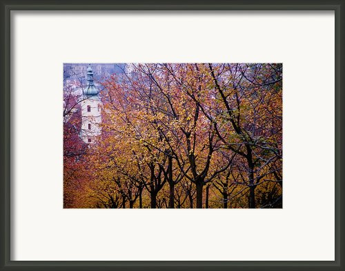 View Of Prague From Mala Strana Park Framed Print By Axiom Photographic