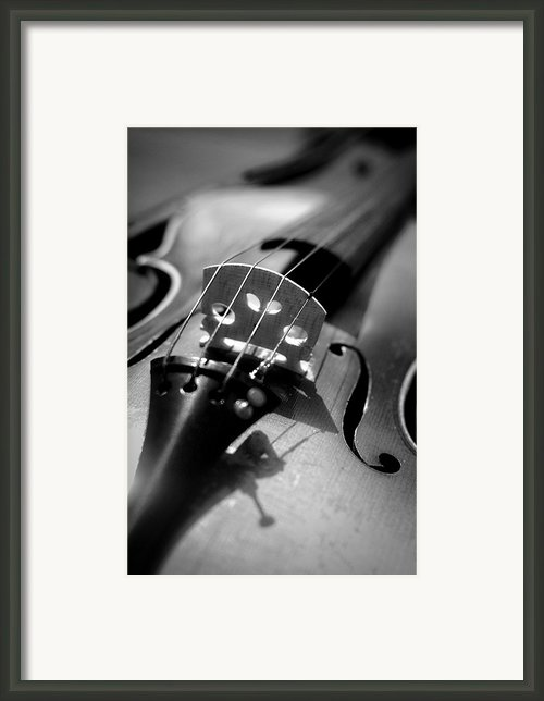 Violin Framed Print By Danielle Donders - Mothership Photography