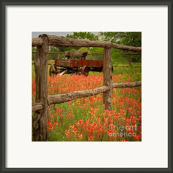 Wagon In Paintbrush - Texas Wildflowers Wagon Fence Landscape Flowers Framed Print By Jon Holiday