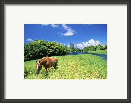 Wainiha Valley Framed Print By Peter French - Printscapes