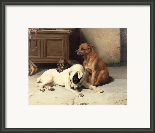 Waiting For Master Framed Print By William Henry Hamilton Trood