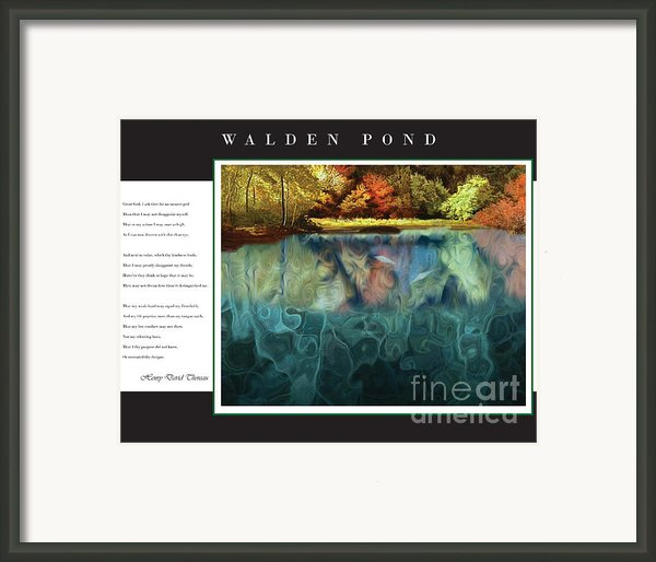 Walden Pond Framed Print By David Glotfelty