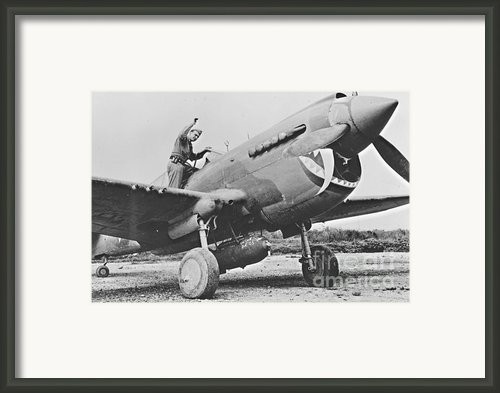 Warhawk P40 1943 Framed Print By Padre Art