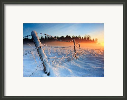 Warm Cold Winter Sunset Framed Print By Romeo Koitmae