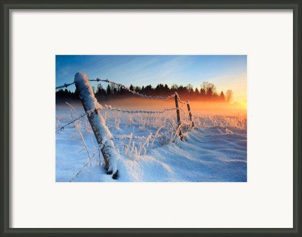 Warm Cold Winter Sunset Framed Print By Romeo Koitmae