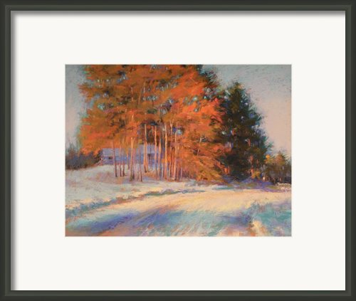 Warm Sunlight On A Cold Winters Day Framed Print By Barbara Jaenicke