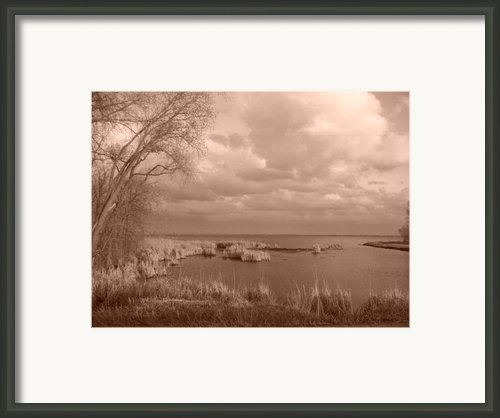 Watching The Clouds In The Park. Framed Print By Joshua Fronczak