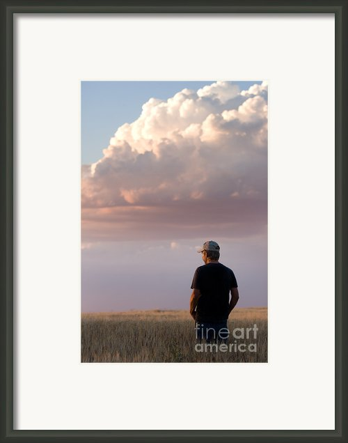 Watching The Grain Grow Framed Print By Cindy Singleton
