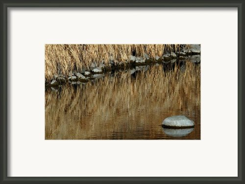 Water Colored  Framed Print By Steven Milner