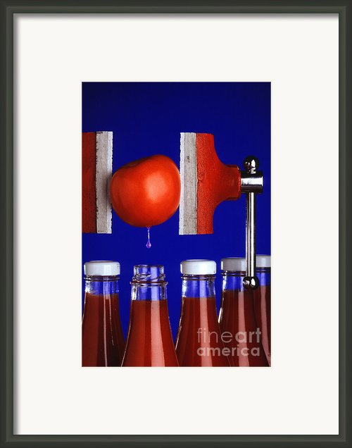 Water Extraction From Tomato Framed Print By Photo Researchers