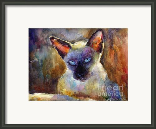 Watercolor Siamese Cat Painting Framed Print By Svetlana Novikova