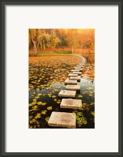 Way In The Lake Framed Print By Evgeni Dinev