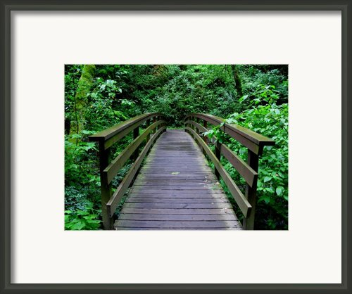 We All Have Bridges To Cross Framed Print By Pj  Cloud