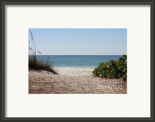 Welcome To The Beach Framed Print By Carol Groenen