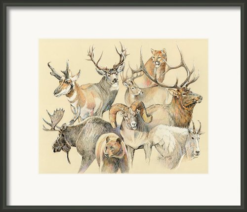 Western Heritage Framed Print By Steve Spencer