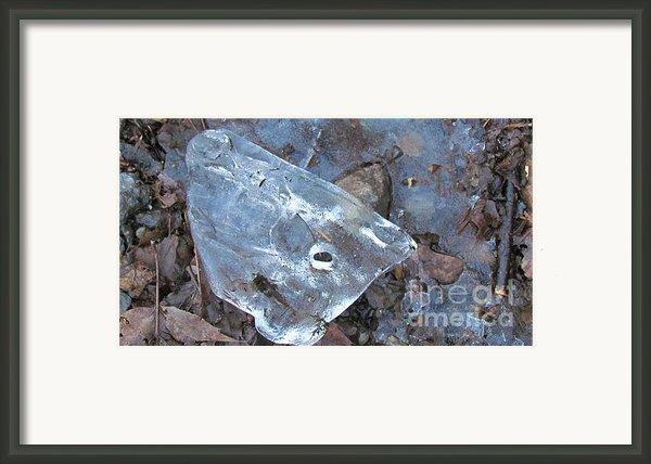 Whale Framed Print By Randi Shenkman