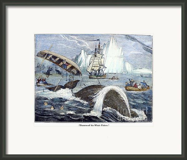 Whaling, 1833 Framed Print By Granger