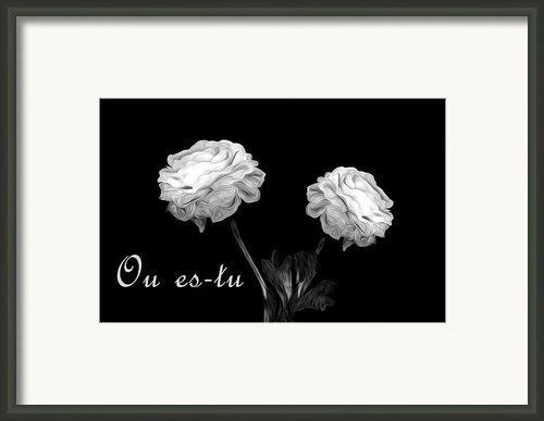 Where Are You Framed Print By Cecil Fuselier