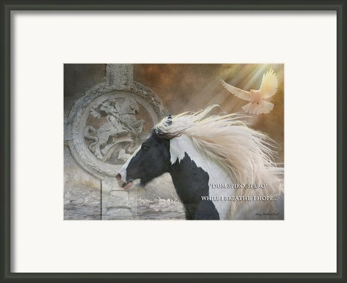 While I Breathe I Hope Framed Print By Terry Kirkland Cook