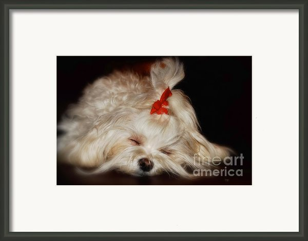 While Sugarplums Danced Framed Print By Lois Bryan