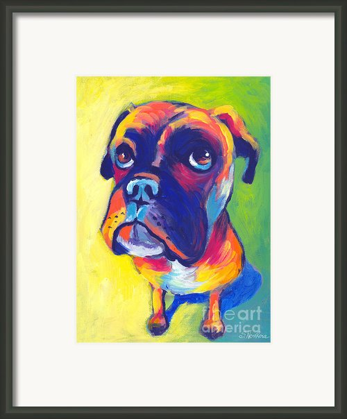 Whimsical Boxer Dog Framed Print By Svetlana Novikova