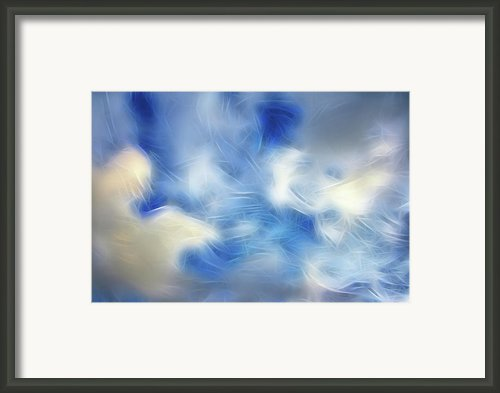 Whimsical Sky Framed Print By Lisa Stanley