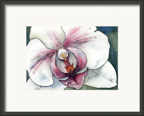 White And Pink Orchid Framed Print By Cherilynn Wood