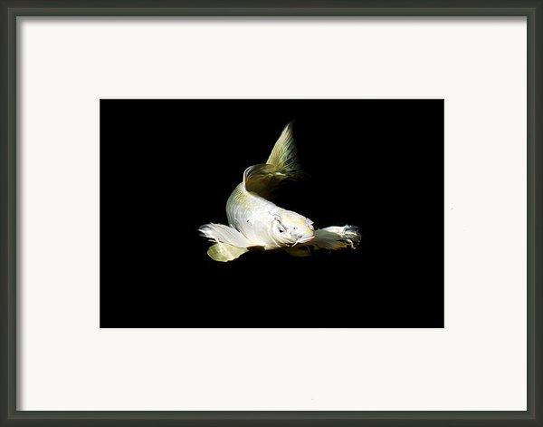 White Angel Framed Print By Don Mann