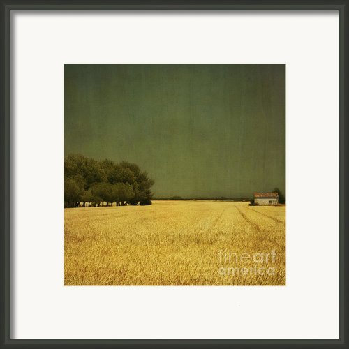 White Barn Framed Print By Paul Grand