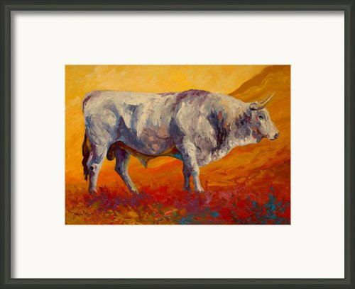 White Bull Framed Print By Marion Rose