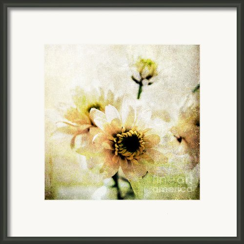 White Flowers Framed Print By Linda Woods